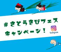 """種子島プロジェクトのニュース:""""#さとうきびフェス""""インスタグラムキャンペーンを実施します"""