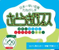 """日本一早い収穫たねがしま""""さとうきびフェス"""" を11月29日に開催します"""