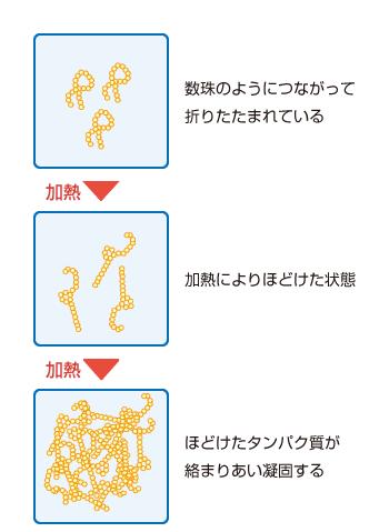 加熱凝固性の改善効果(砂糖なしの場合)
