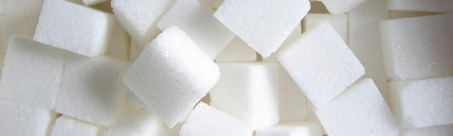 砂糖を科学する!